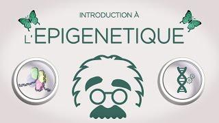 Introduction à l'épigénétique