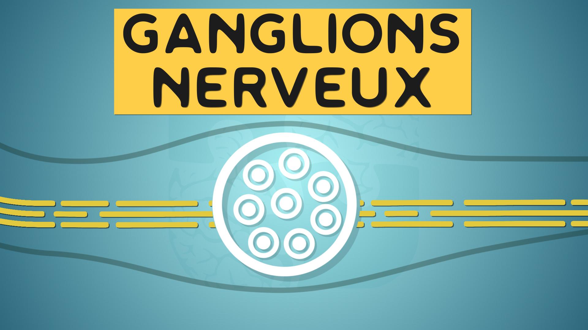 ganglion spinal rachidien