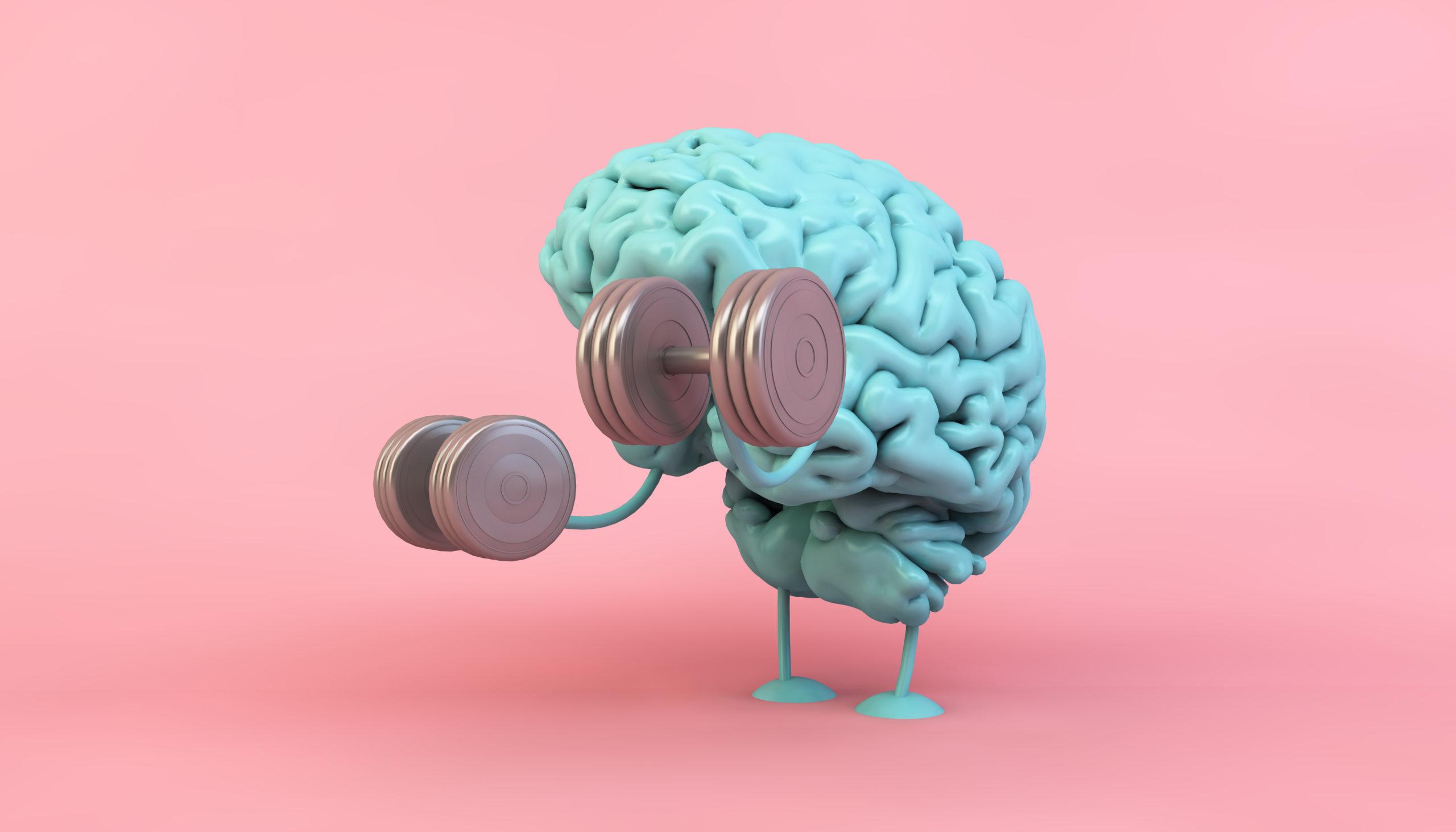 Cerveau et Condition physique